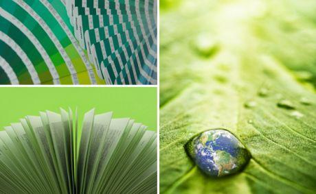 Le vert, notre priorité